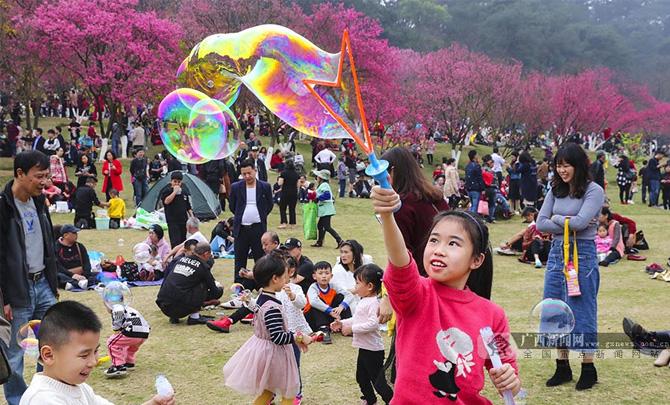 和美壮乡韵 乐享中国年―全区各地新春文化旅游活动精彩纷呈