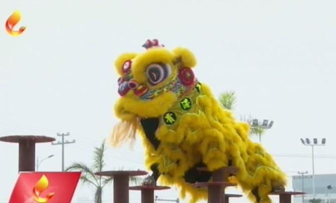 【欢度新春】醒狮欢腾闹新春