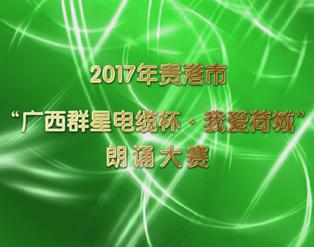 """【视频】2017年贵港市""""广西群星杯.我爱荷城""""朗诵大赛"""