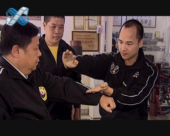 佛山拳师 梦圆贵港