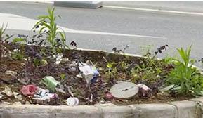 绿化带里丢垃圾 实在不应该