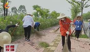 市城市管理部门开展市容环境大扫除活动